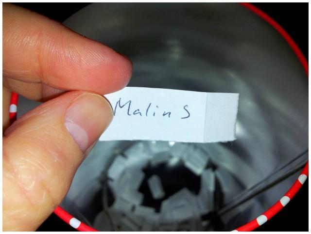Vinnare i WeSkins tävlingen blev Malin S