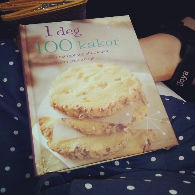 1 deg 100 kakor ny bakbok med 1 recept i 100 olika variationer på småkakor