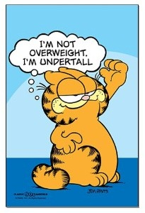 Garfield, I'm not overweight, I'm undertall