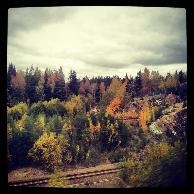 Någonstans i Småland via ett x2000 fönster