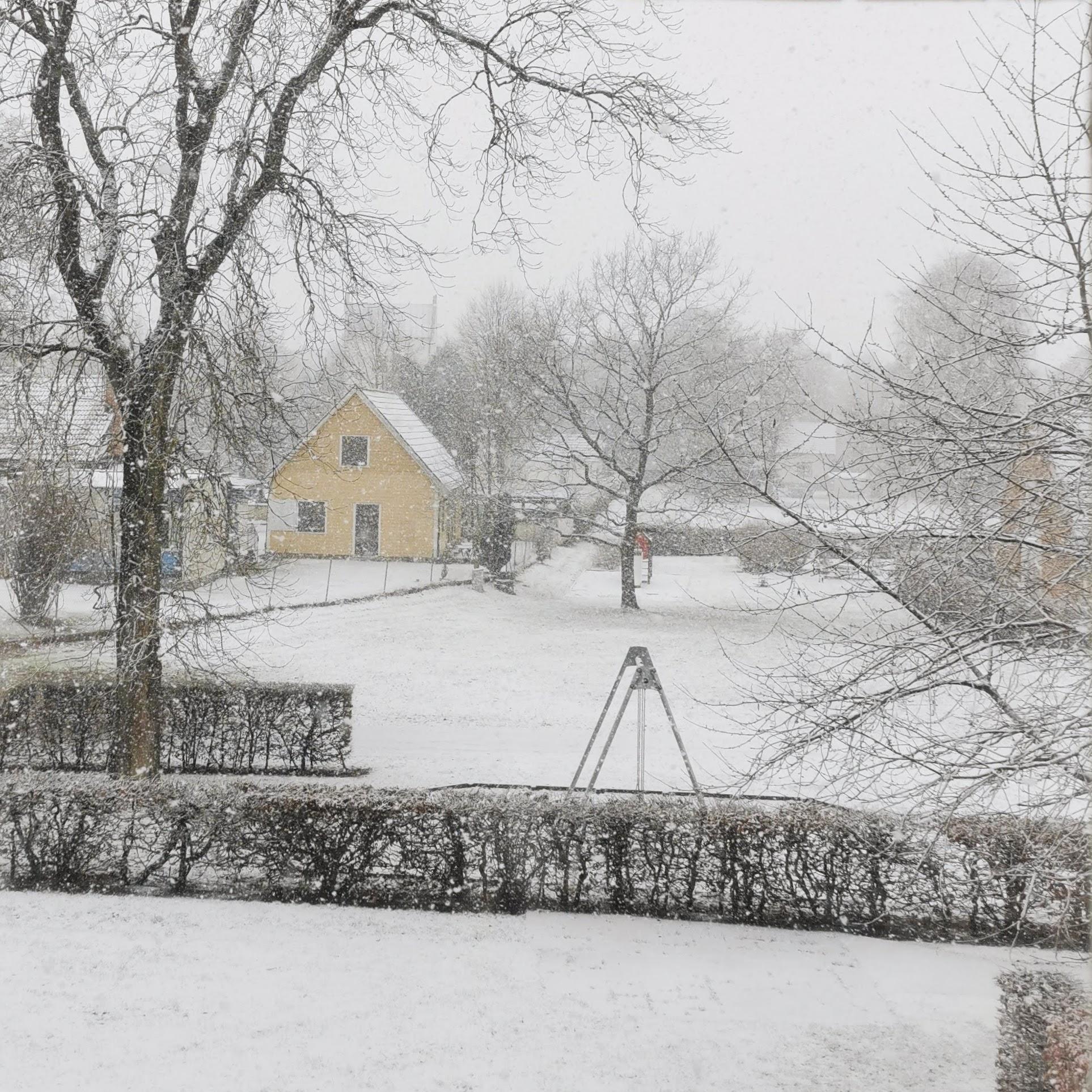 Helen J Holmberg - den laktos & allergivänliga bloggen år 2021 första snö